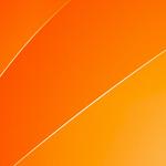 Чеснок — острый сосед с постоянной пропиской: описание, посадка и уход в открытом грунте, рекомендации, возможные болезни (25 Фото & Видео) +Отзывы